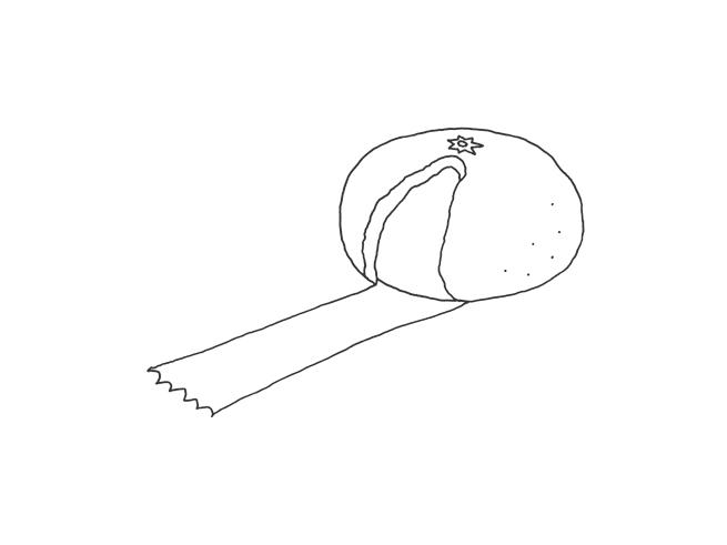 037_fruit_tape_sketch