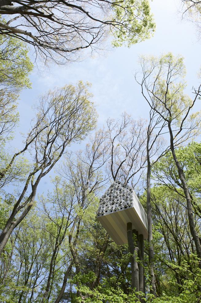 bird-apartment17_MasayaYoshimura