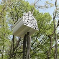 bird-apartment_web_thumnail