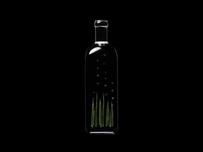 rain_bottle15_hiroshi_iwasaki